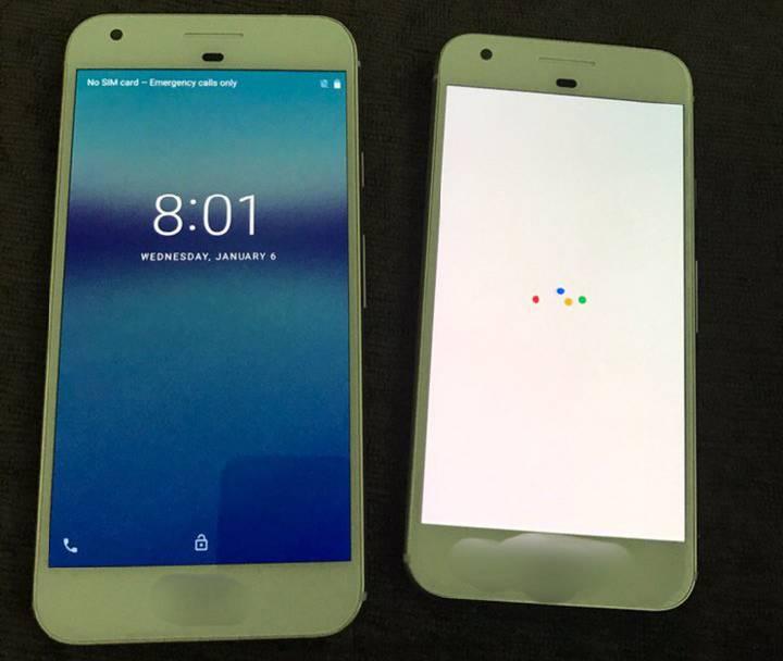 foto dal vivo di Google Pixel e Pixel XL